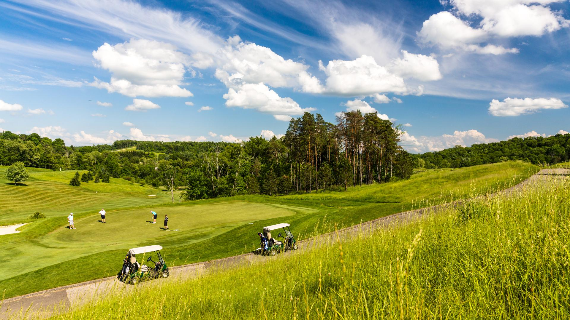 Championship Golf photo