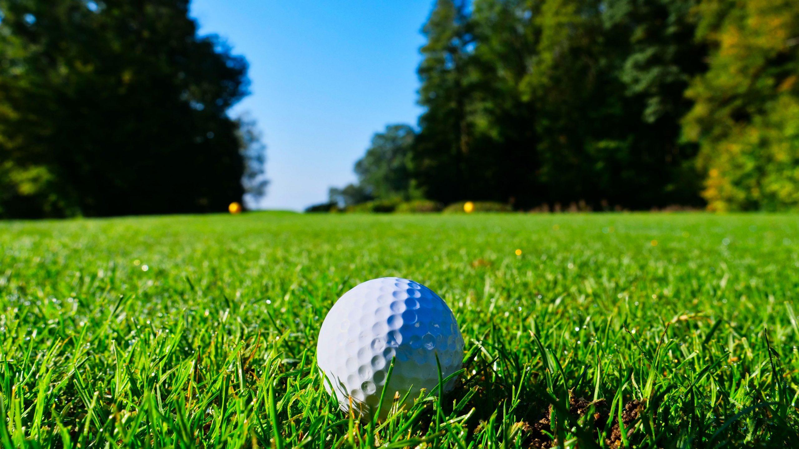Bloch Memorial Golf Course photo